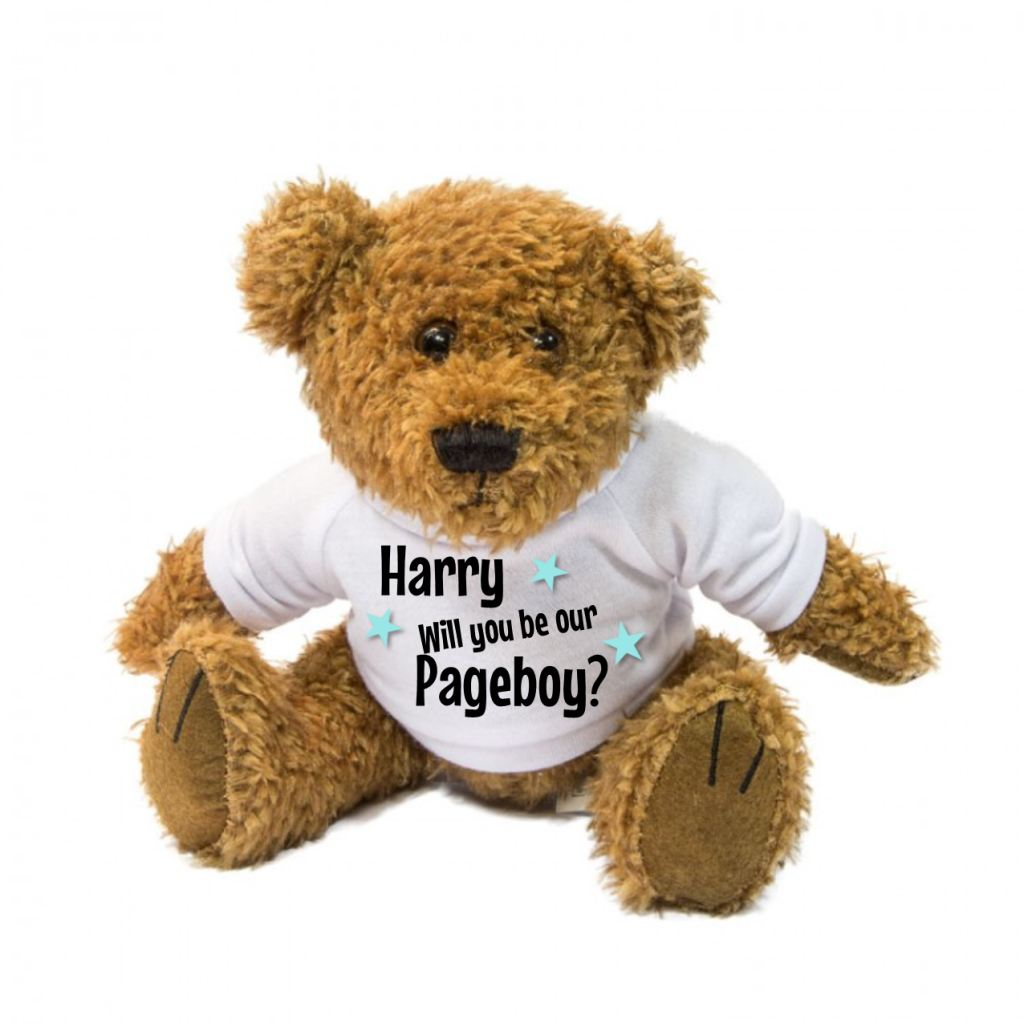 Will You Be Our Pageboy? Personalised Teddy Bear