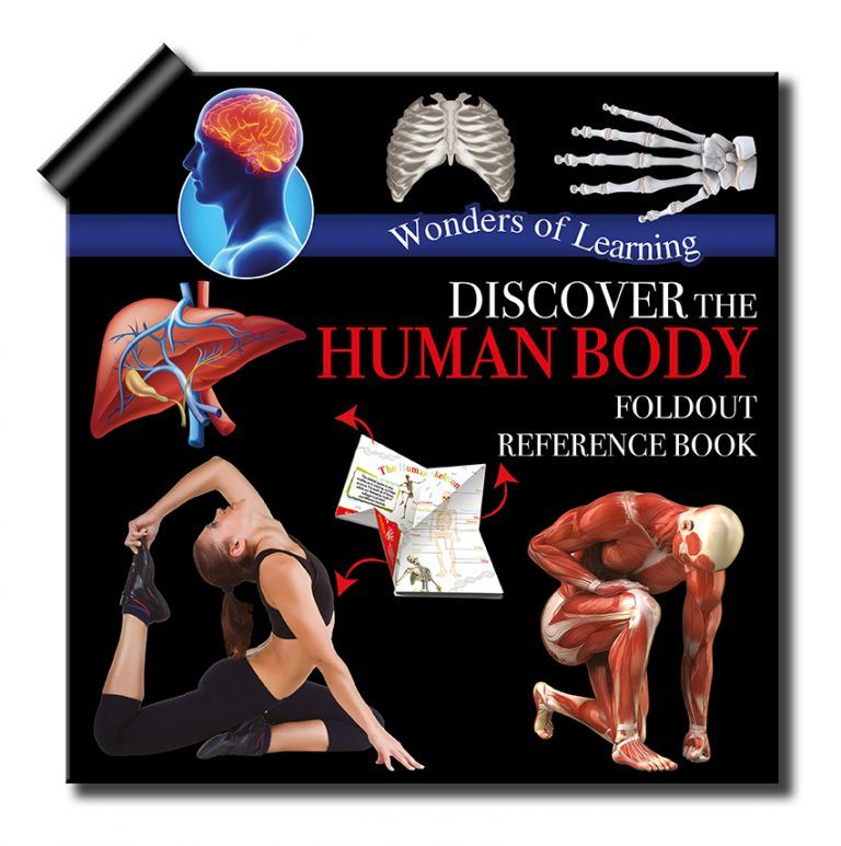 Discover The Human Body Fold-out Reference Book by North Parade